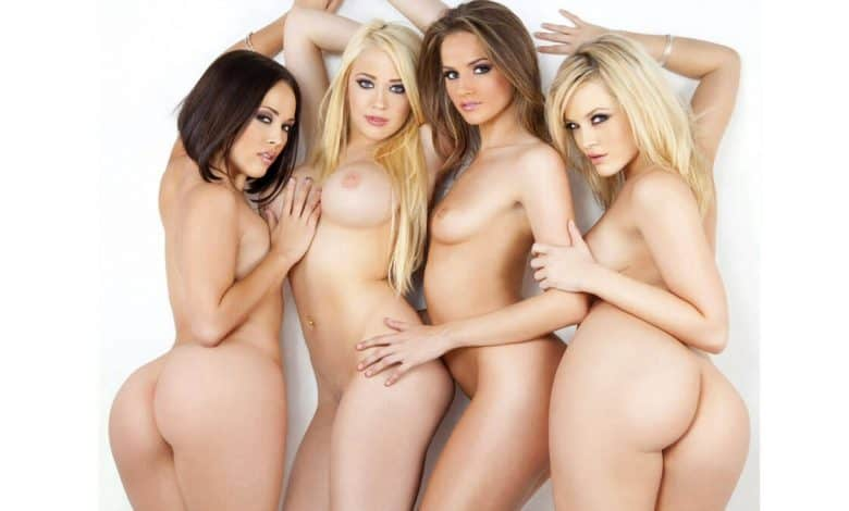 4 of the hottest pornstars nude and sexy with white background